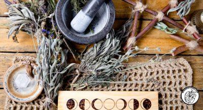 Household Remedies & Basic Herbalism