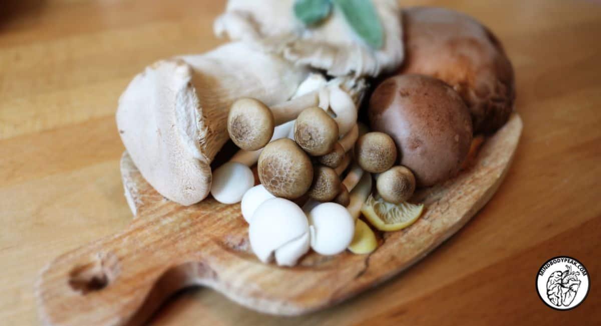 Mind Body Peak Performance: Mushroom Industry