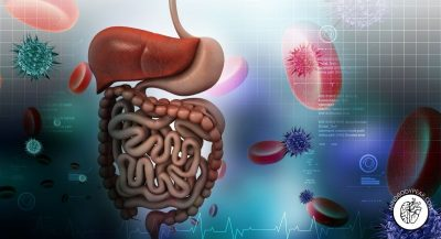 Heal the Gut to Strengthen the Brain